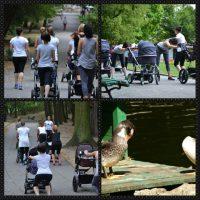 Fotorelacja – Trening Fit Mom w Parku Strzeleckim